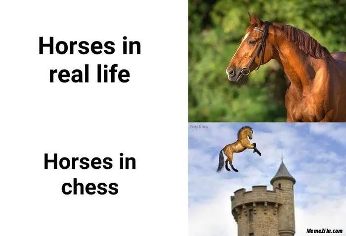 Horses in real life vs Horses in chase meme