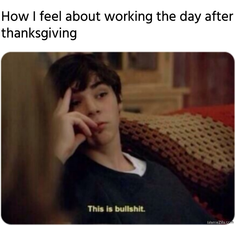 How I feel about working the day after thanksgiving meme