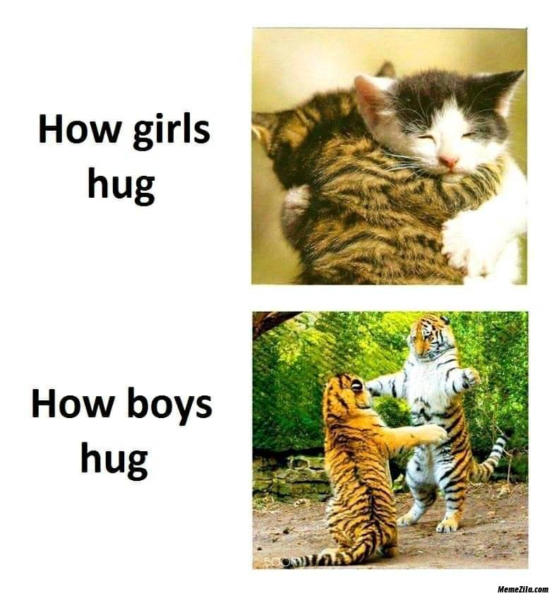 How girls hug vs How boys hug meme