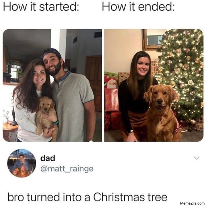 How it started How it ended Bro turned into a Christmas tree meme