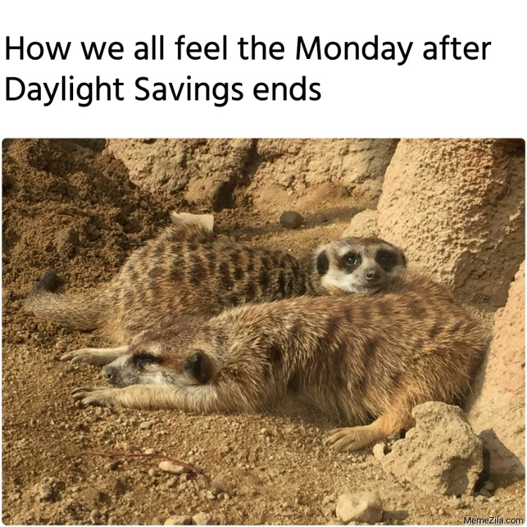 How we all feel the Monday after Daylight Savings ends meme