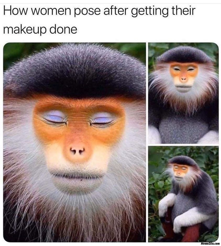 How women pose after getting their makeup done meme
