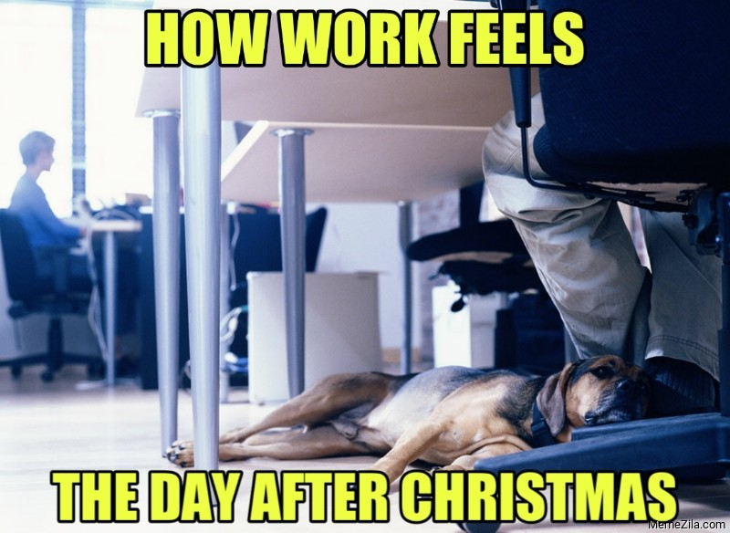 How work feels the day after christmas meme