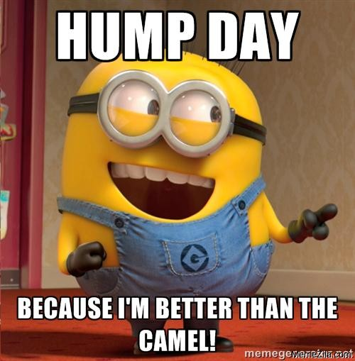 Hump day Because Im better than the the camel meme
