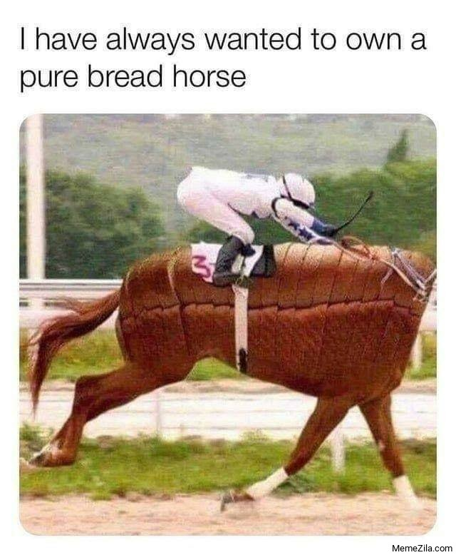 I always wanted to own a pure bread horse meme
