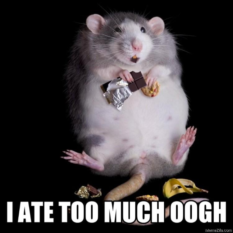 I ate too much oogh meme