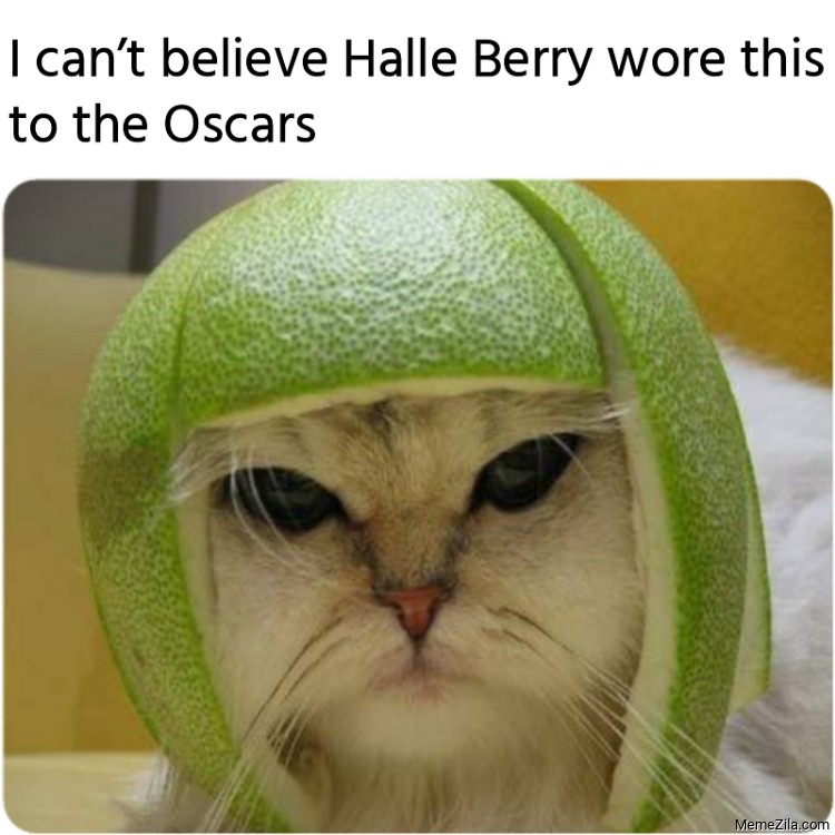 I cant believe Halle Berry wore this to the Oscars meme
