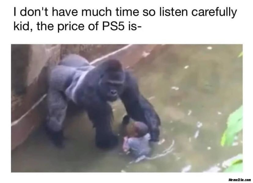 I dont have so much time so listen carefully kid The price of PS5 is meme