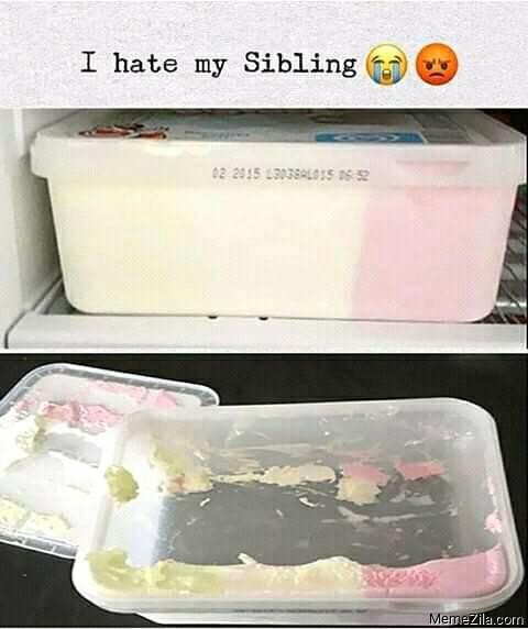 I hate my sibling meme