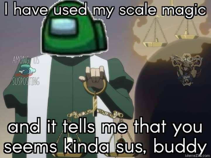 I have used my scale magic And it tells me that you seems kinda sus buddy meme