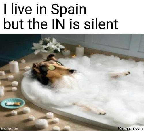 I live in Spain but the IN is silent meme