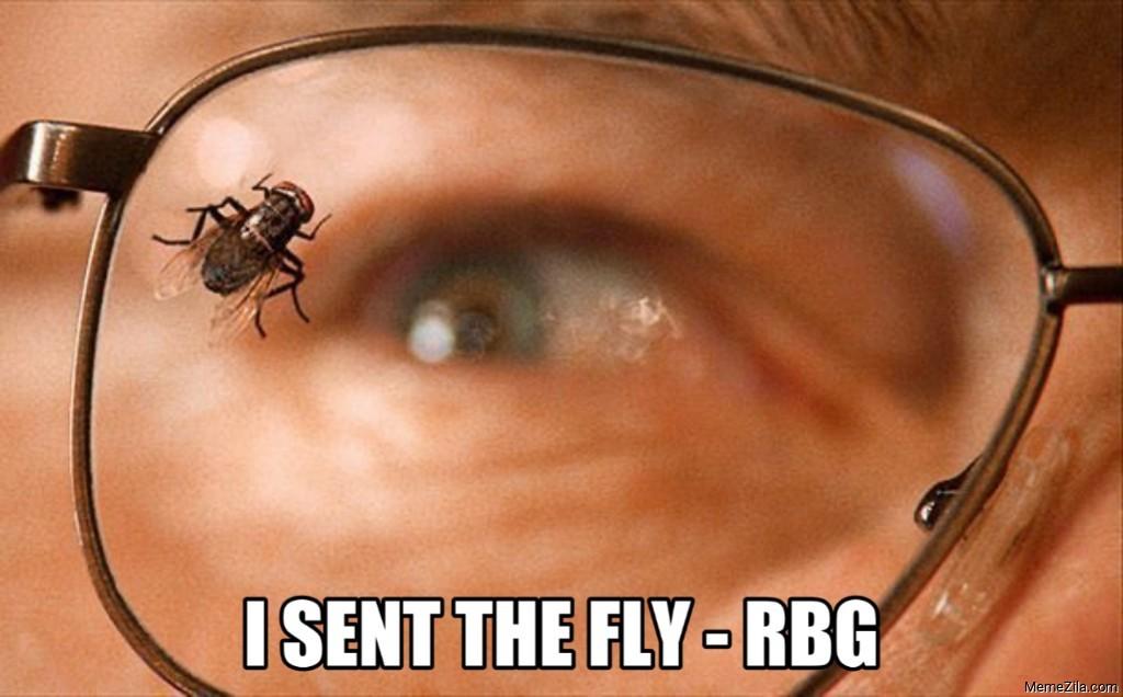 I sent the fly - RBG