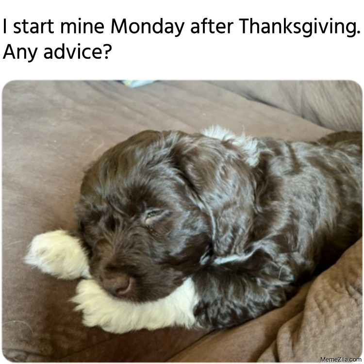 I start mine Monday after Thanksgiving Any advice meme