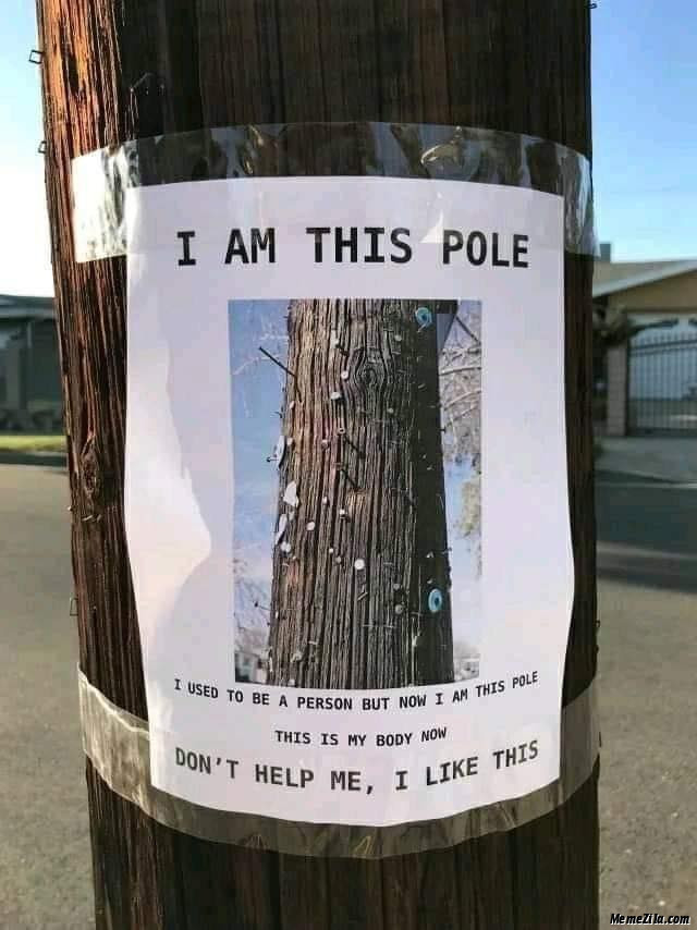 I used to be a person but now I am this pole meme