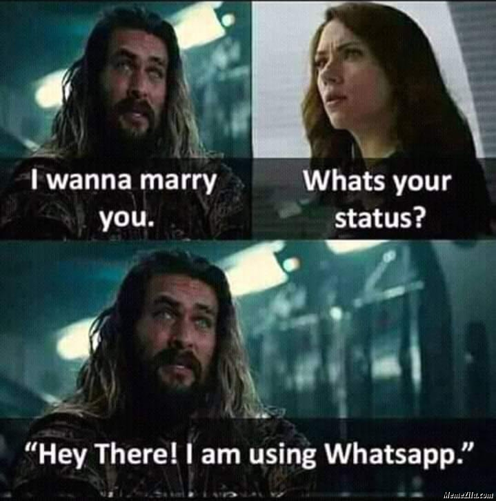 I wanna marry you Whats your status Hey there I am using whatsapp meme
