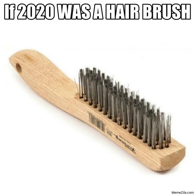 If 2020 was a hair brush meme