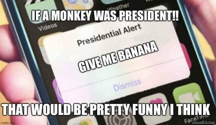 If a monkey was president presidential Alert Give me banana meme