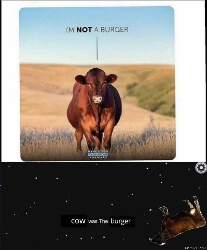 Im not the burger Cow was the burger meme