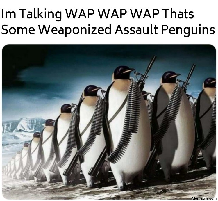 Im talking WAP WAP WAP thats some Weaponized Assault Penguins meme