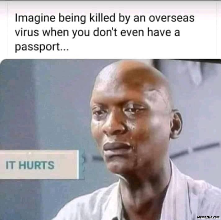 Imagine being killed by an Overseas virus when you dont have a passport meme
