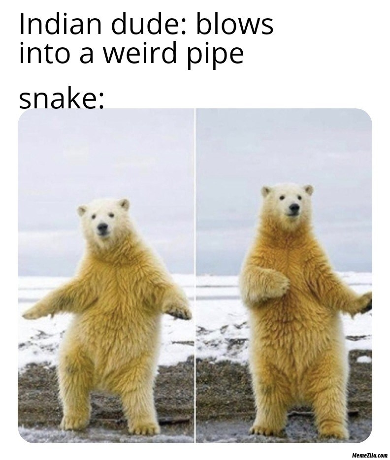 Indian dude blows in weird pipe meanwhile snake meme