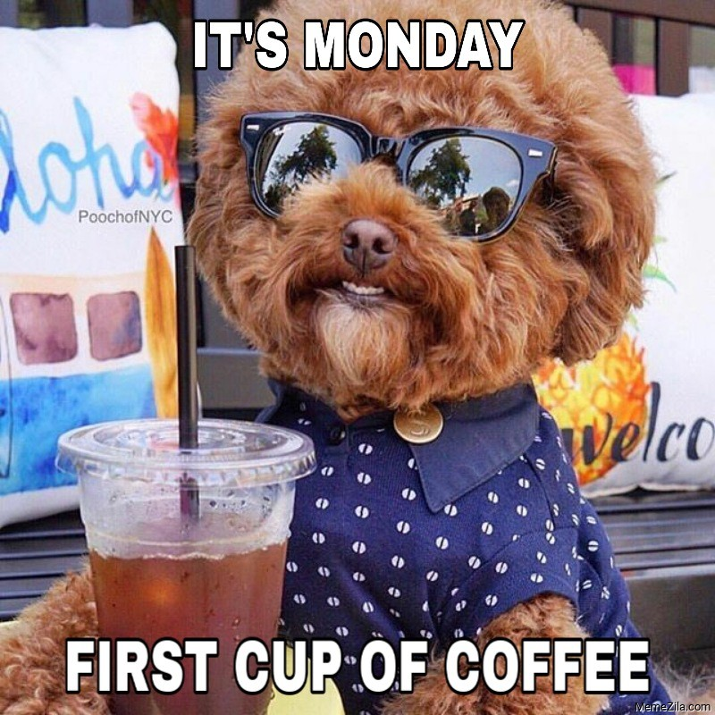 Its Monday First cup of coffee meme