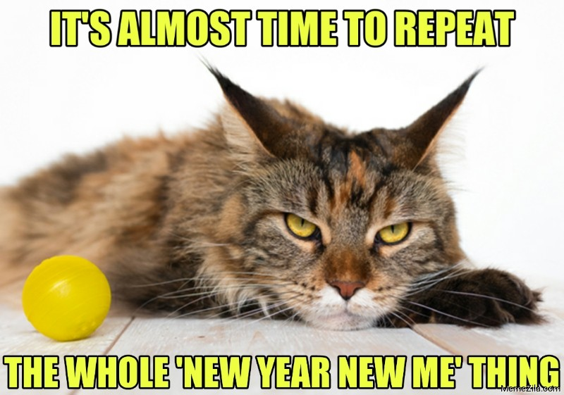 Its almost time to repeat the whole new year new me thing meme