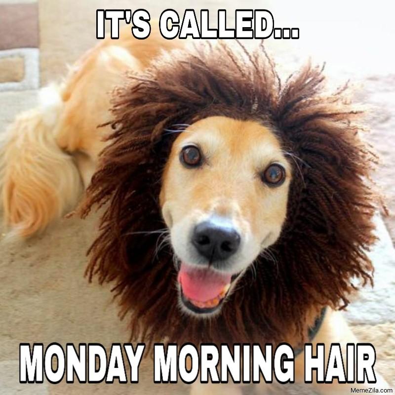 Its called monday morning hair meme