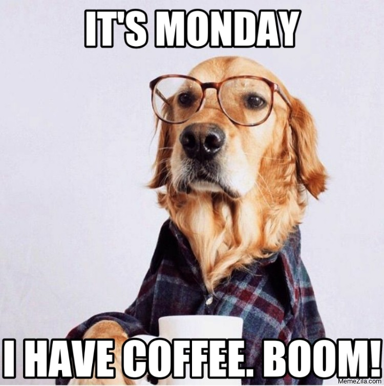 Its monday I have coffee Boom meme