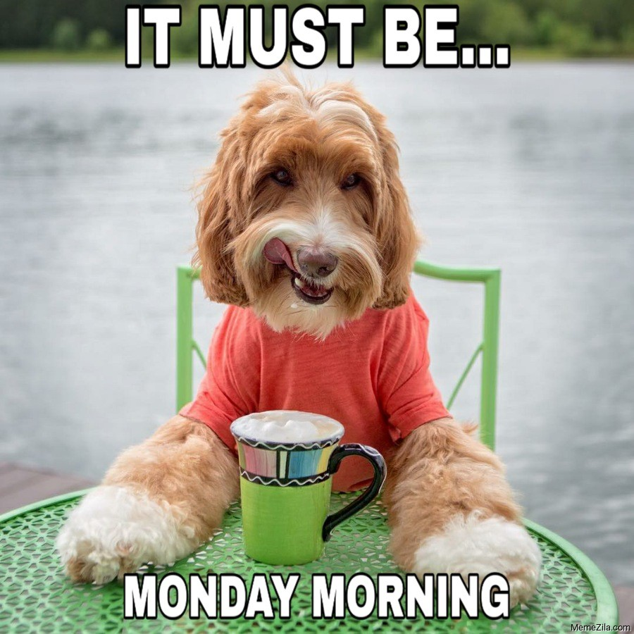 Its must be monday morning meme