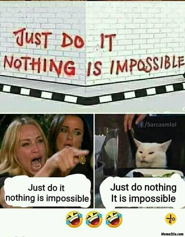 Just do it nothing is impossible vs just do nothing it is impossible cat meme