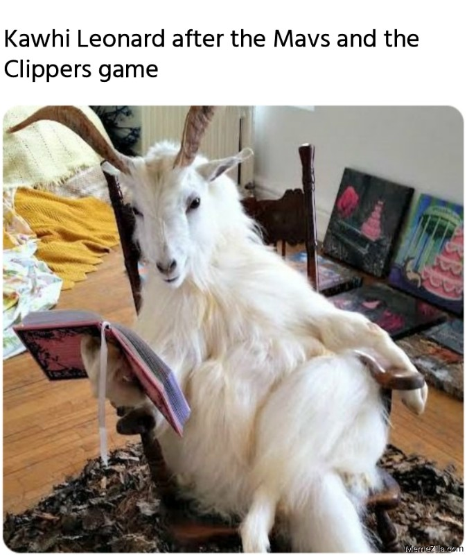 Kawhi Leonard after the Mavs and the Clippers game meme