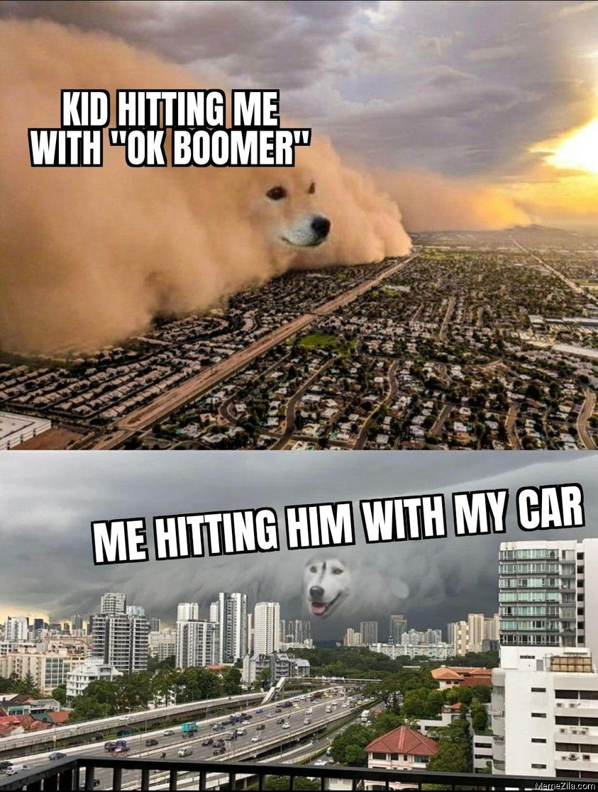 Kid hitting me with Ok boomer Me hitting him with my car meme