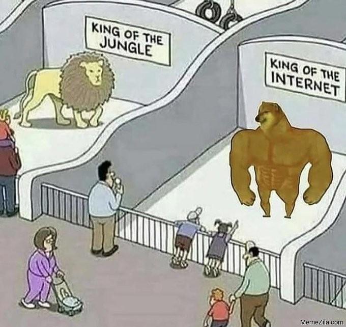 King of the jungle vs King of the Internet meme