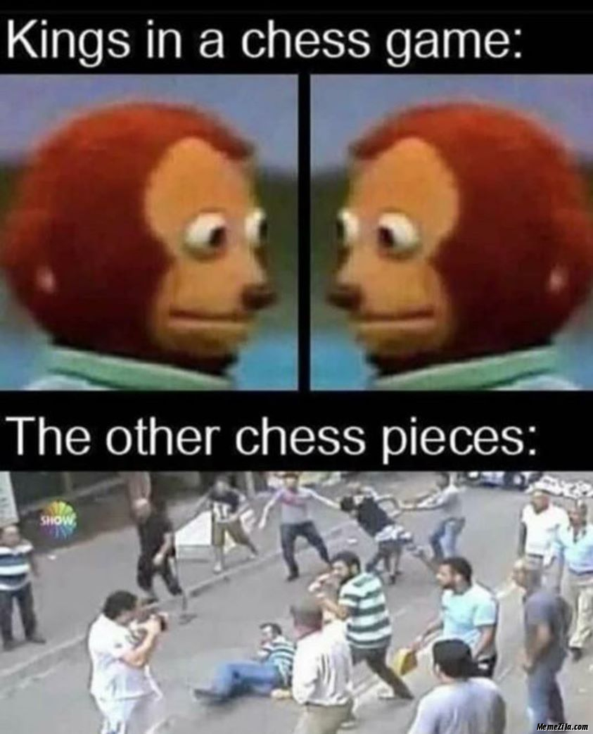 Kings in a chess game The other chess pieces meme