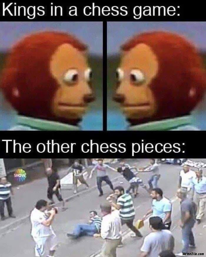 Kings in chess game vs The other chess pieces meme