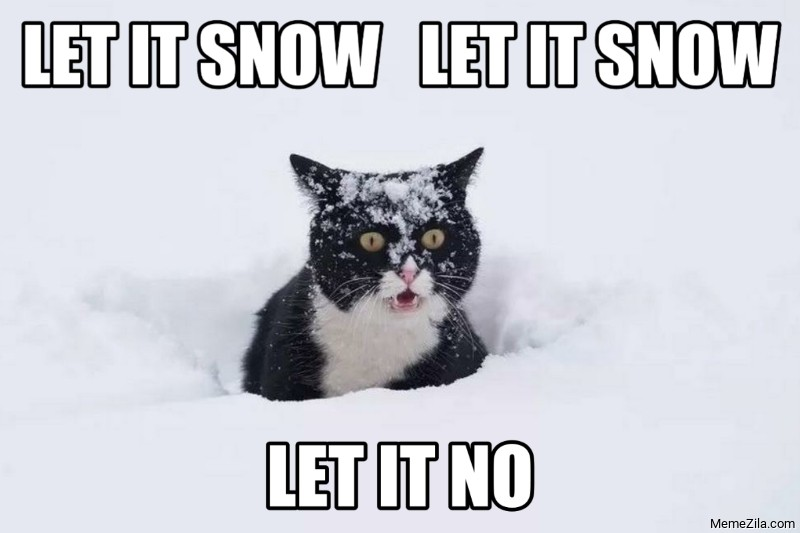 Let it snow Let it snow Let it no cat meme