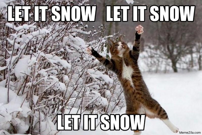 Let it snow Let it snow Let it snow cat meme