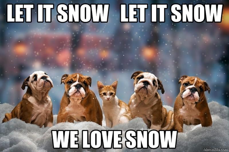 Let it snow Let it snow We love snow dog meme