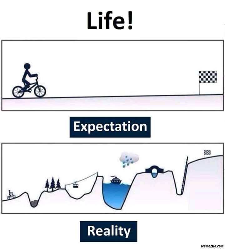 Life expectation vs reality meme