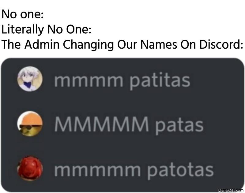 Literally no one The admin changing our names on discord meme