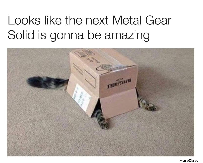 Looks like the next Metal Gear Solid is gonna be amazing meme