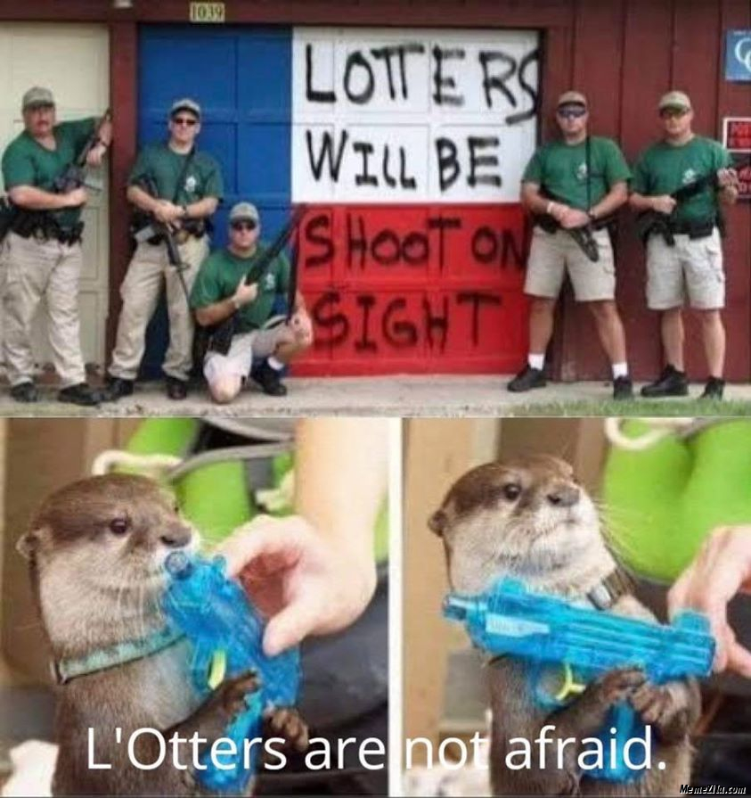 Lotters will be shoot on sight Lotters are not afraid meme