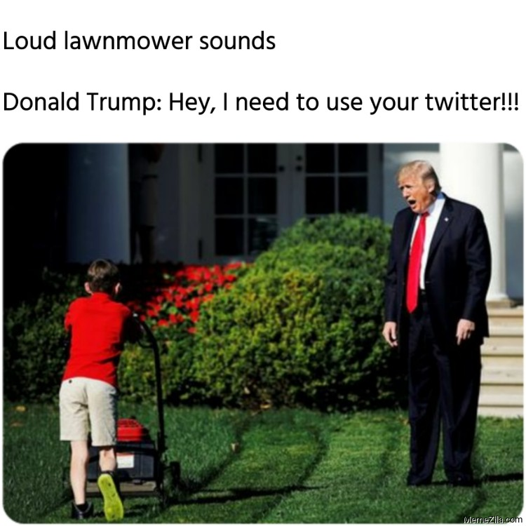 Loud lawnmower sounds Donald Trump Hey I need to use your twitter meme