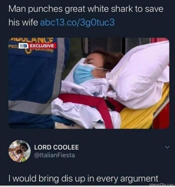 Man punches great white shark to save his wife meme