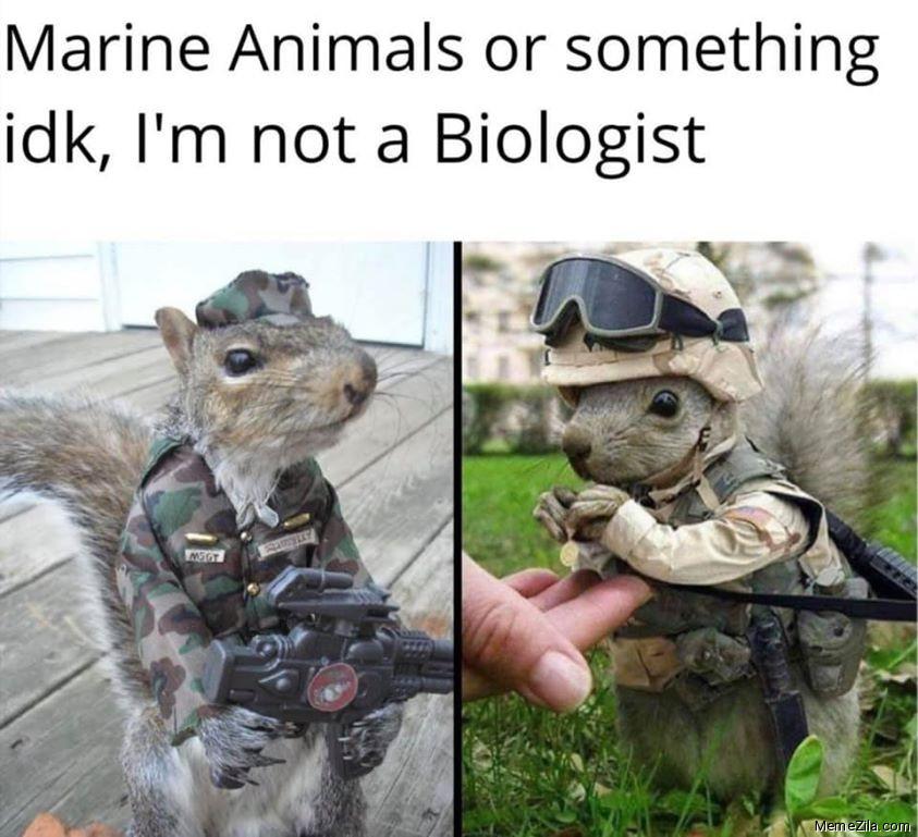 Marine animals or something idk Im not biologist meme