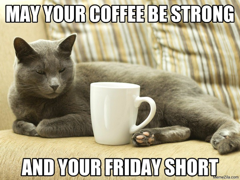 May your coffee be strong and your friday short cat meme
