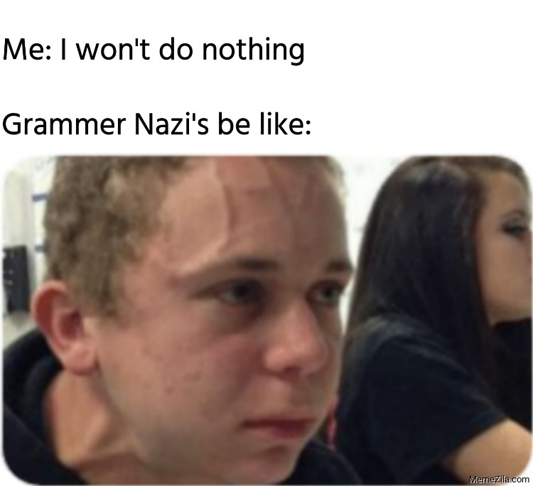 Me I wont do nothing Grammer Nazis be like meme