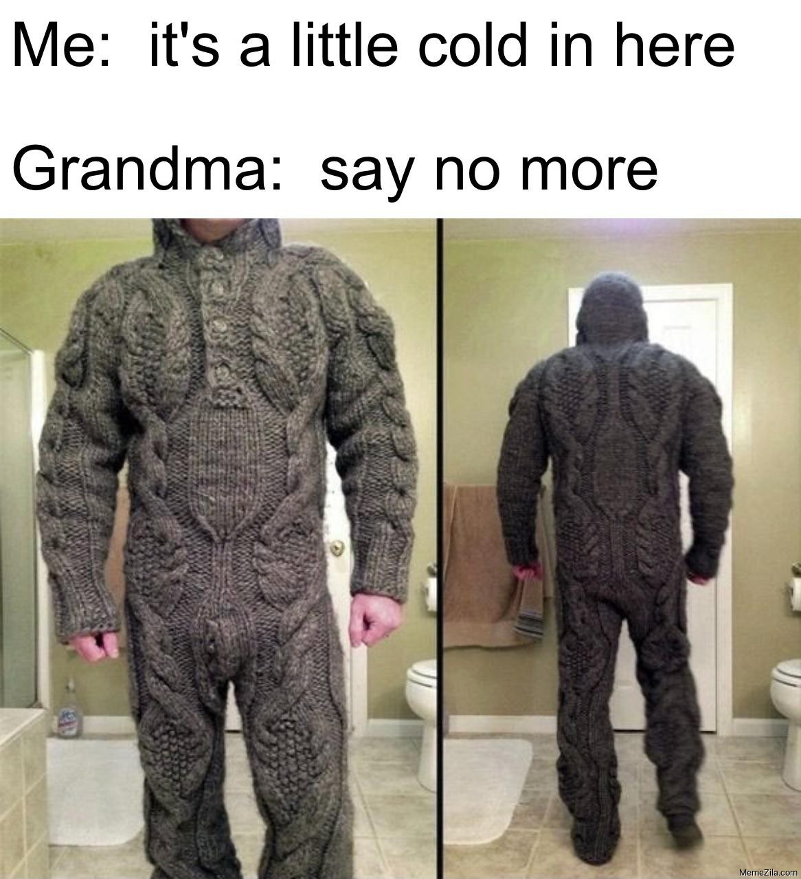 Me: It's a little cold in here Grandma: Say no more meme