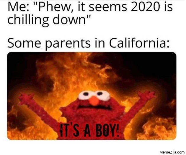 Me Phew it seems 2020 is chilling down Meanwhile some parents in California Its a boy meme